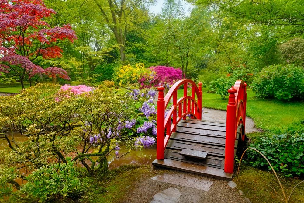 Japanese Garden, Clingendael Park